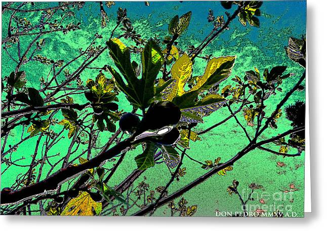 Figtree Greeting Cards - Celebrating the Spring 2 Greeting Card by Don Pedro De Gracia