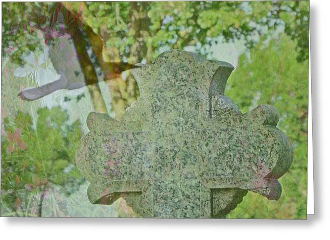 Tree Roots Greeting Cards - Celtic Roots Greeting Card by Kathy Franklin