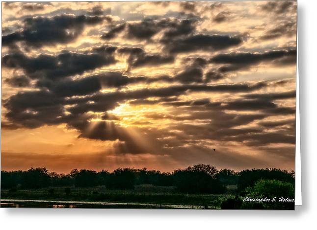 Nature Greeting Cards - Central Florida Sunrise Greeting Card by Christopher Holmes