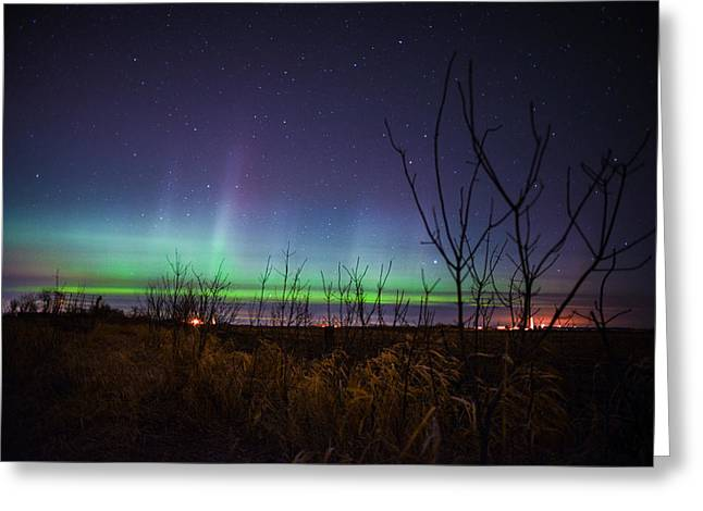Ejection Greeting Cards - Central Minnesota Aurora Greeting Card by Alex Blondeau