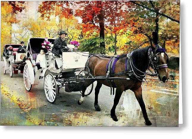 Central Park Carriage Greeting Card by Diana Angstadt