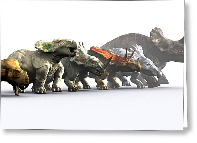 Triceratops Greeting Cards - Ceratopsian Dinosaurs Greeting Card by Christian Darkin