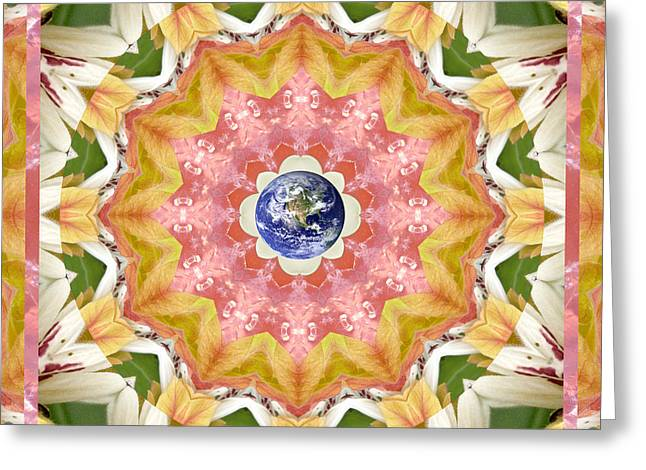 Recently Sold -  - Rose Petals Greeting Cards - Certainty Greeting Card by Bell And Todd