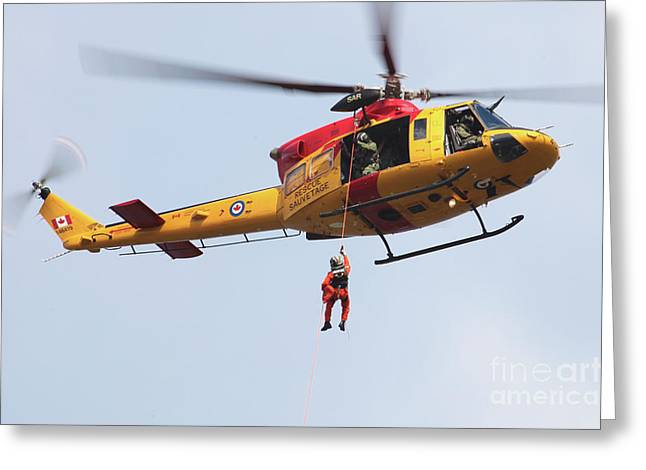 Hovering Greeting Cards - Ch-146 Griffon Of The Canadian Forces Greeting Card by Timm Ziegenthaler