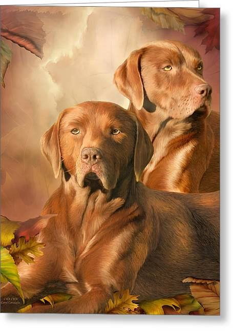 Dog Prints Mixed Media Greeting Cards - CHA CHA - The Chocolate Lab Greeting Card by Carol Cavalaris