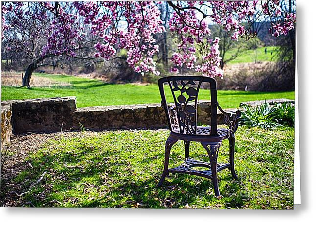 Empty Chairs Photographs Greeting Cards - Chair in the Garden Under a Blooming Magnolia Tree Greeting Card by George Oze