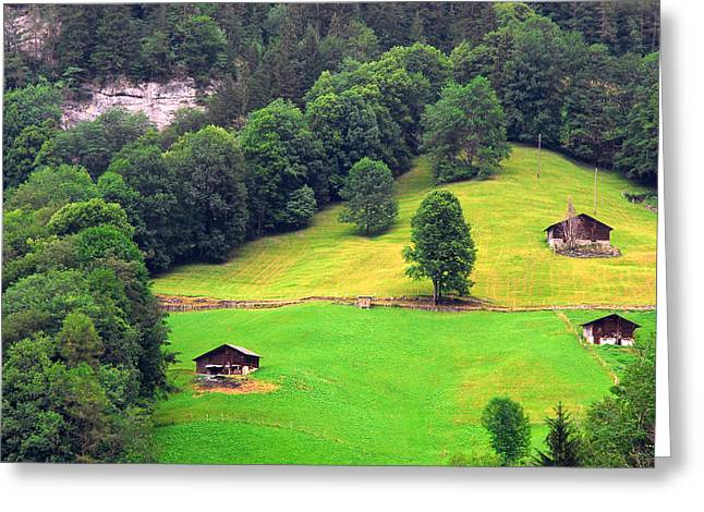 Lauterbrunnen Greeting Cards - Chalets In Apline Meadows Greeting Card by Anne Keiser
