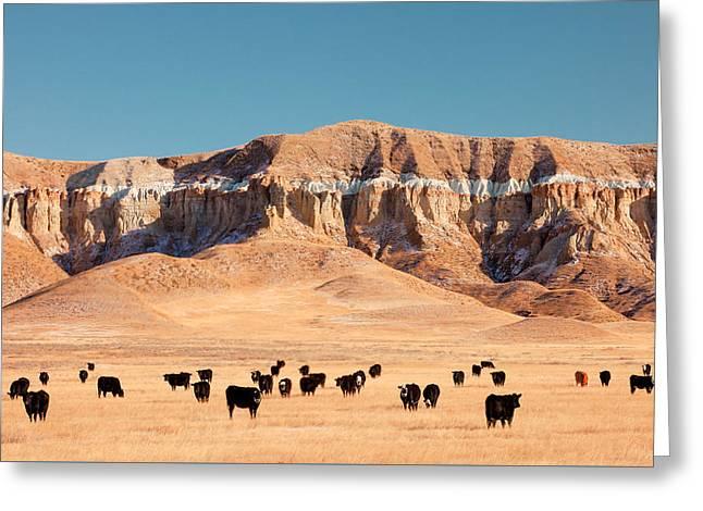 Chalk Cliffs Greeting Card by Todd Klassy