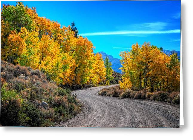 Mountain Road Greeting Cards - Changing Times Greeting Card by Lynn Bauer