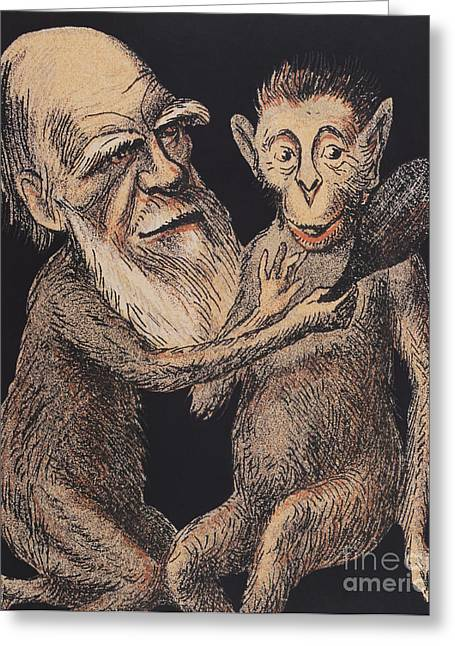 Science Collection - Greeting Cards - Charles Darwin Caricature Greeting Card by Science Source