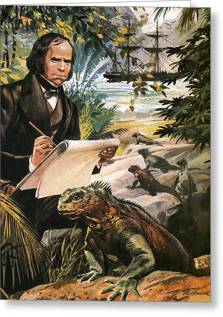 Charles Darwin On The Galapagos Islands Greeting Card by Andrew Howat