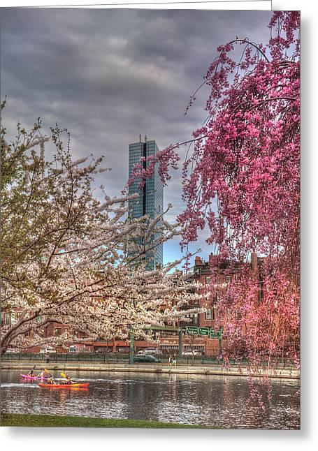 Spring Scenes Greeting Cards - Charles River Esplanade - Boston Greeting Card by Joann Vitali