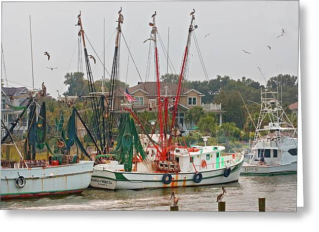 Fishing Creek Greeting Cards - Charleston SC 3 Greeting Card by Joel P Black