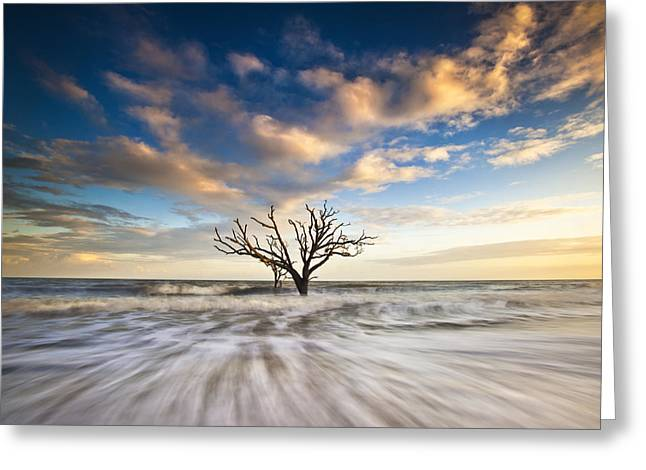Seascape Photography Greeting Cards - Charleston SC Botany Bay Edisto Island - Alone Greeting Card by Dave Allen