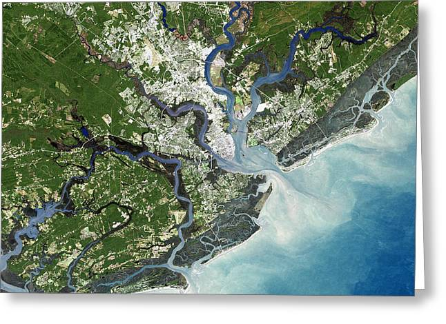 Urbanisation Greeting Cards - Charleston, South Carolina, Usa Greeting Card by Planetobserver
