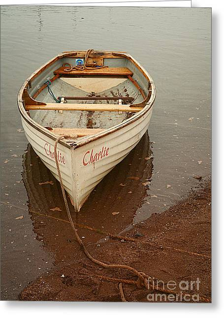 Wooden Ship Greeting Cards - Charlie Greeting Card by Alexandra Lavizzari
