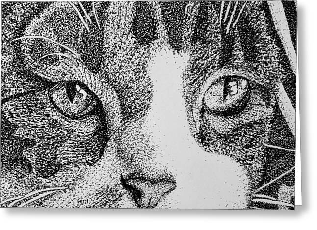 Pen And Ink Drawing Greeting Cards - Charlie Greeting Card by Mik Smith