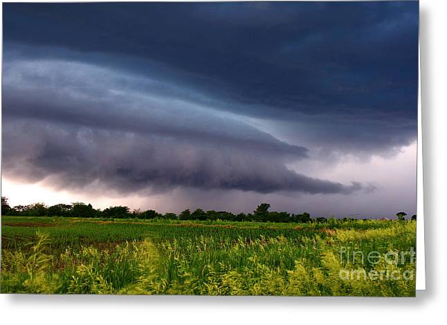 Summer Squall Greeting Cards - Chase Ends Greeting Card by Colin Davis