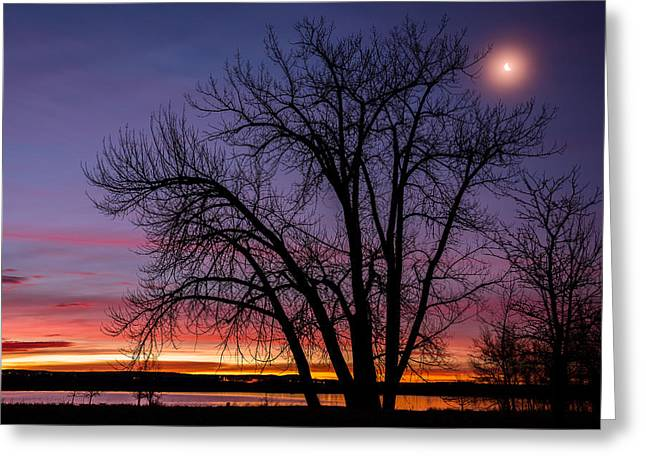 Darren Greeting Cards - Chatfield Moon At Sunrise Greeting Card by Darren  White