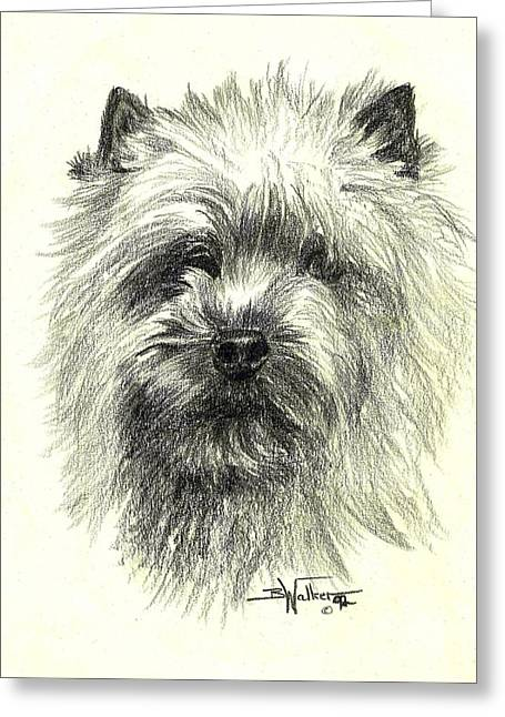 Hairy Drawings Greeting Cards - Chatter Greeting Card by Barbara Walker