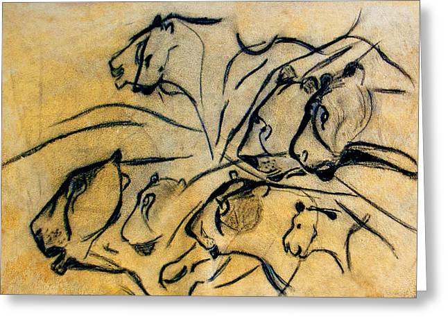 chauvet cave lions Clear Greeting Card by Weston Westmoreland