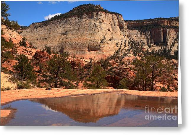 White Sandstone Greeting Cards - Checkerboard Mesa Utah Reflections Greeting Card by Adam Jewell