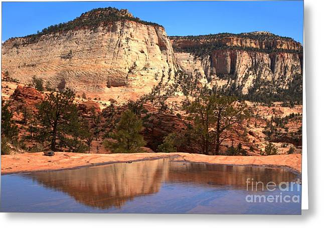 White Sandstone Greeting Cards - Checkerboard Mesa Zion National Park Greeting Card by Adam Jewell