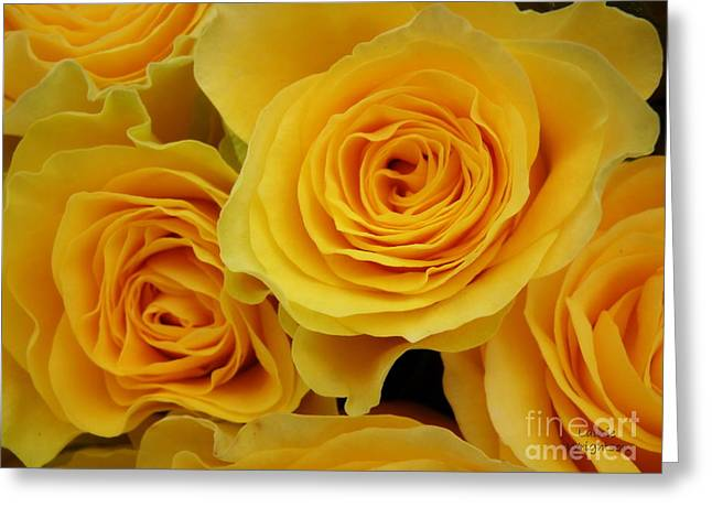 Cheerful Yellow Roses Greeting Card by Lainie Wrightson