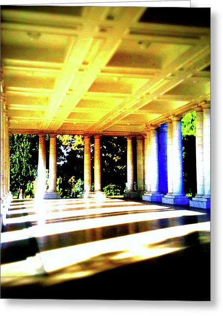 Denver Pyrography Greeting Cards - Cheesman Park Pavilion Greeting Card by Dean McCready