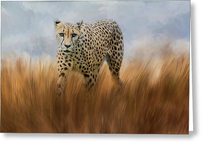 Wildcats Greeting Cards - Cheetah In The Field Greeting Card by Jai Johnson