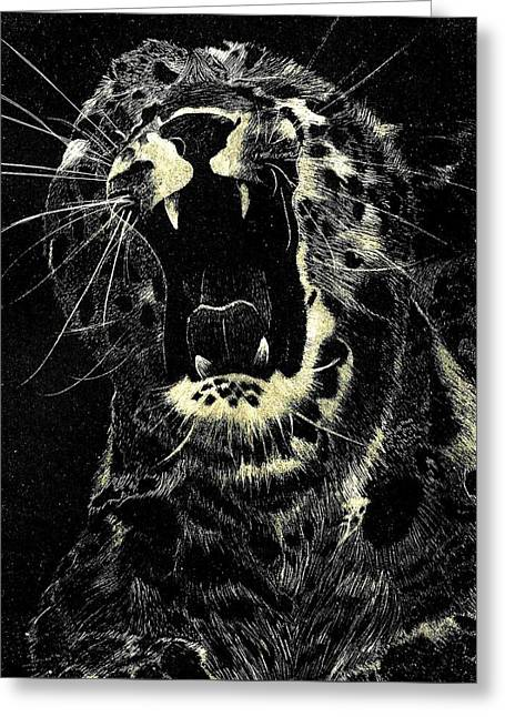 Wild Life Drawings Greeting Cards - Cheetah  Greeting Card by Jesse Temple