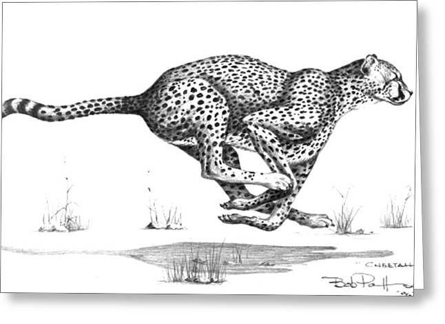 Cheetah On The Kill Greeting Card by Bob Patterson