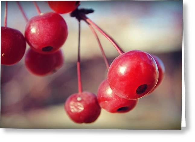 Berry Greeting Cards - Cherries Greeting Card by Brittany Strelluf