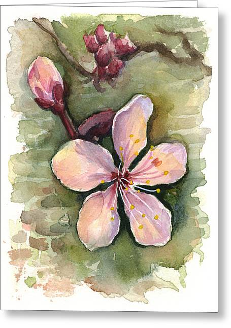 Cherry Blossom Watercolor Greeting Card by Olga Shvartsur