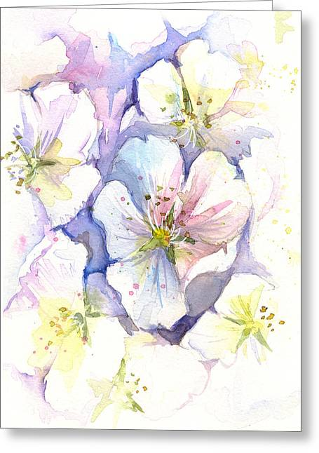 Cherry Blossoms Watercolor Greeting Card by Olga Shvartsur