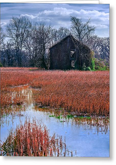 Overcast Day Greeting Cards - Chesapeake Barn Greeting Card by Steven Maxx