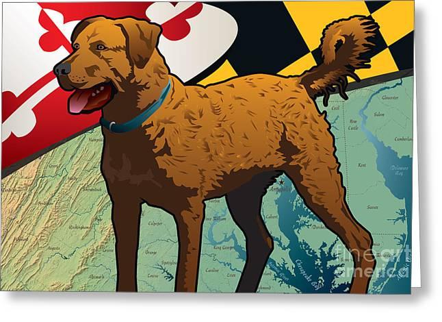 Gun Dog Greeting Cards - Chesapeake Bay Retriever of Maryland  Greeting Card by Joe Barsin