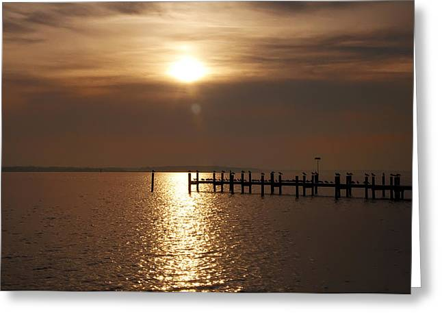 Morn Greeting Cards - Chesapeake Morning Greeting Card by Bill Cannon