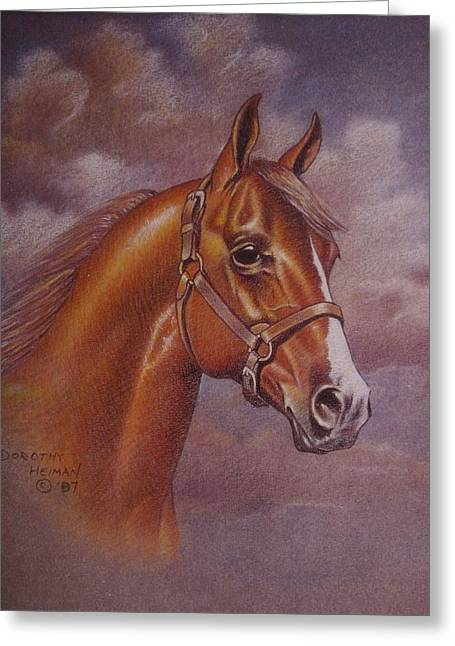 Dorothy Coatsworth Greeting Cards - Chestnut Quarter Horse Greeting Card by Dorothy Coatsworth