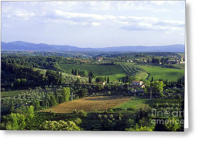 Grape Vineyard Greeting Cards - Chianti Region in Italy Greeting Card by Gregory Ochocki and Photo Researchers
