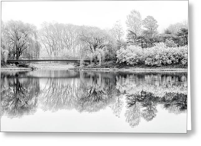 Chicago Botanic Garden In Black And White Greeting Card by Julie Palencia