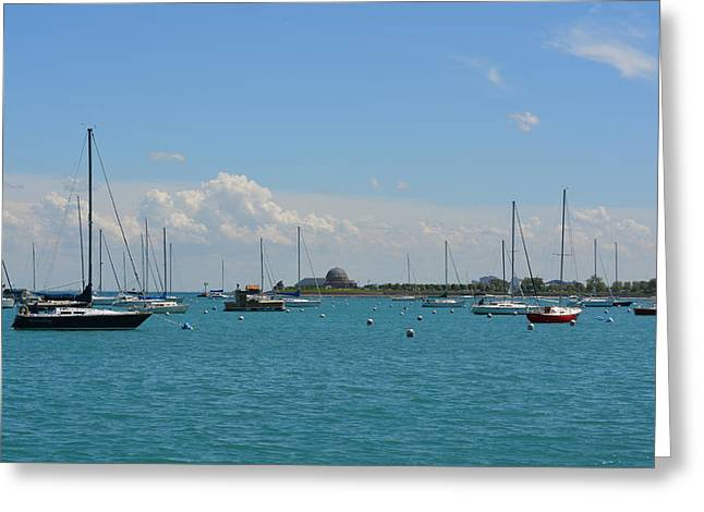 Docked Sailboat Greeting Cards - Chicago Harbour Greeting Card by Richard Andrews