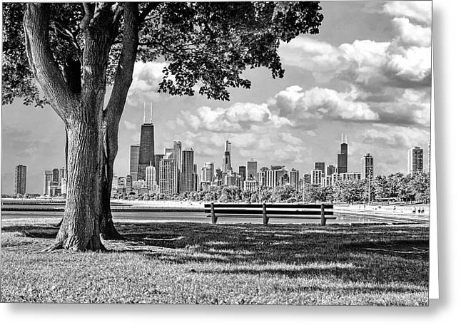 Chicago North Skyline Park Black And White Greeting Card by Christopher Arndt