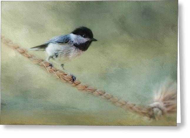Chickadee At The Shore Greeting Card by Jai Johnson