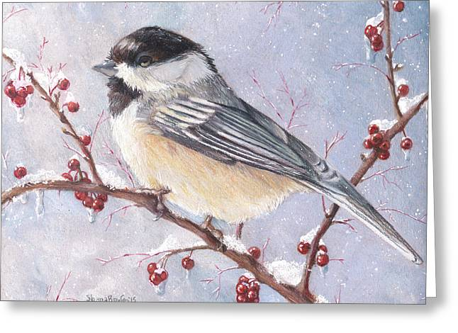Snow Capped Drawings Greeting Cards - Chickadee dee dee Greeting Card by Shana Rowe
