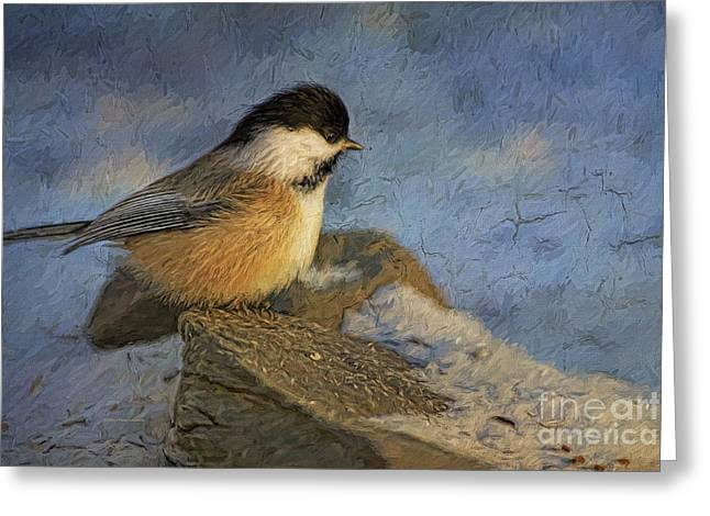 Snow Seeds Greeting Cards - Chickadee Winter Perch Greeting Card by Deborah Benoit