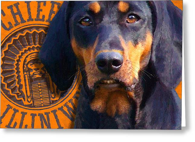 Family Pet Greeting Cards - Chief Greeting Card by Doug Kreuger