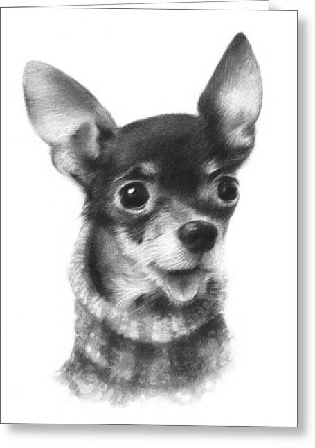 Chihuahua Portraits Greeting Cards - Chihuahua Pup Greeting Card by Natasha Denger