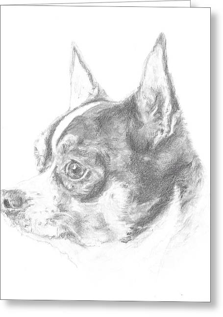 Chihuahua Artwork Greeting Cards - Chihuahua Greeting Card by Rebecca Vose