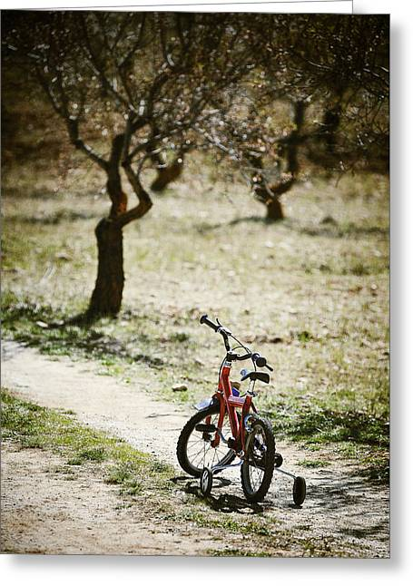 Missing Child Greeting Cards - Childs Bike On A Dusty Road Greeting Card by Paul Bucknall